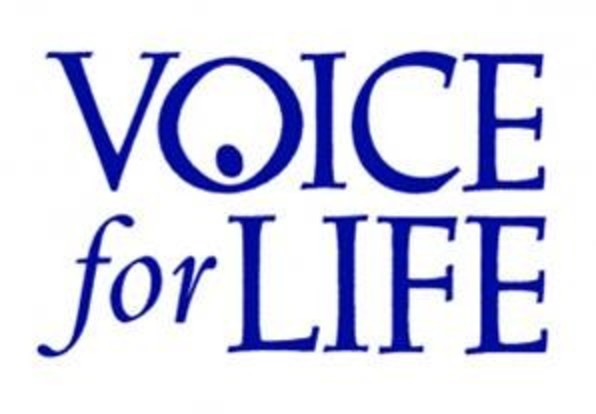 Voice For Life   Blue
