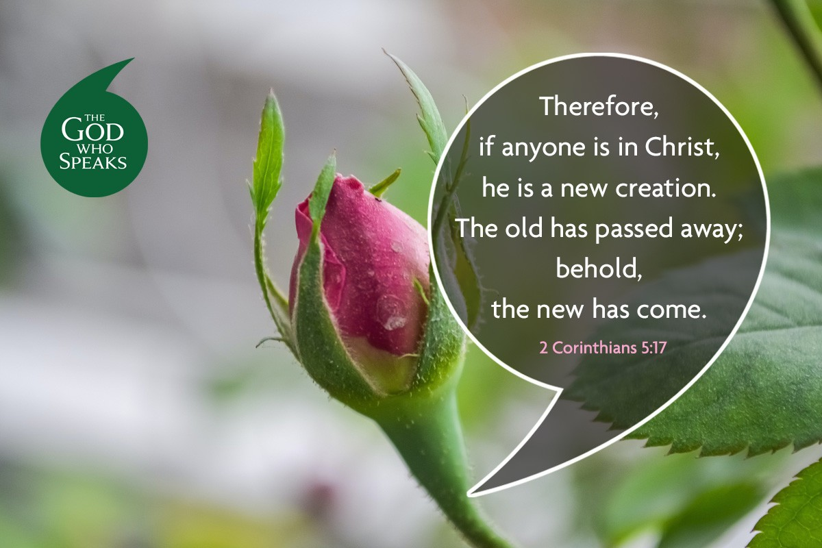 24 August 20weekly Bible Quote 1200x800px