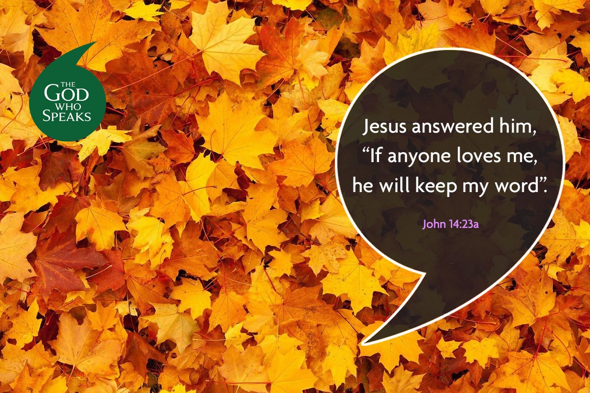 26 Oct 20 Weekly Bible Quote1200x800px