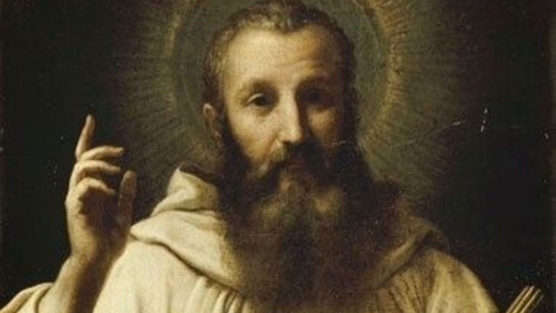 Saint Bernard 1
