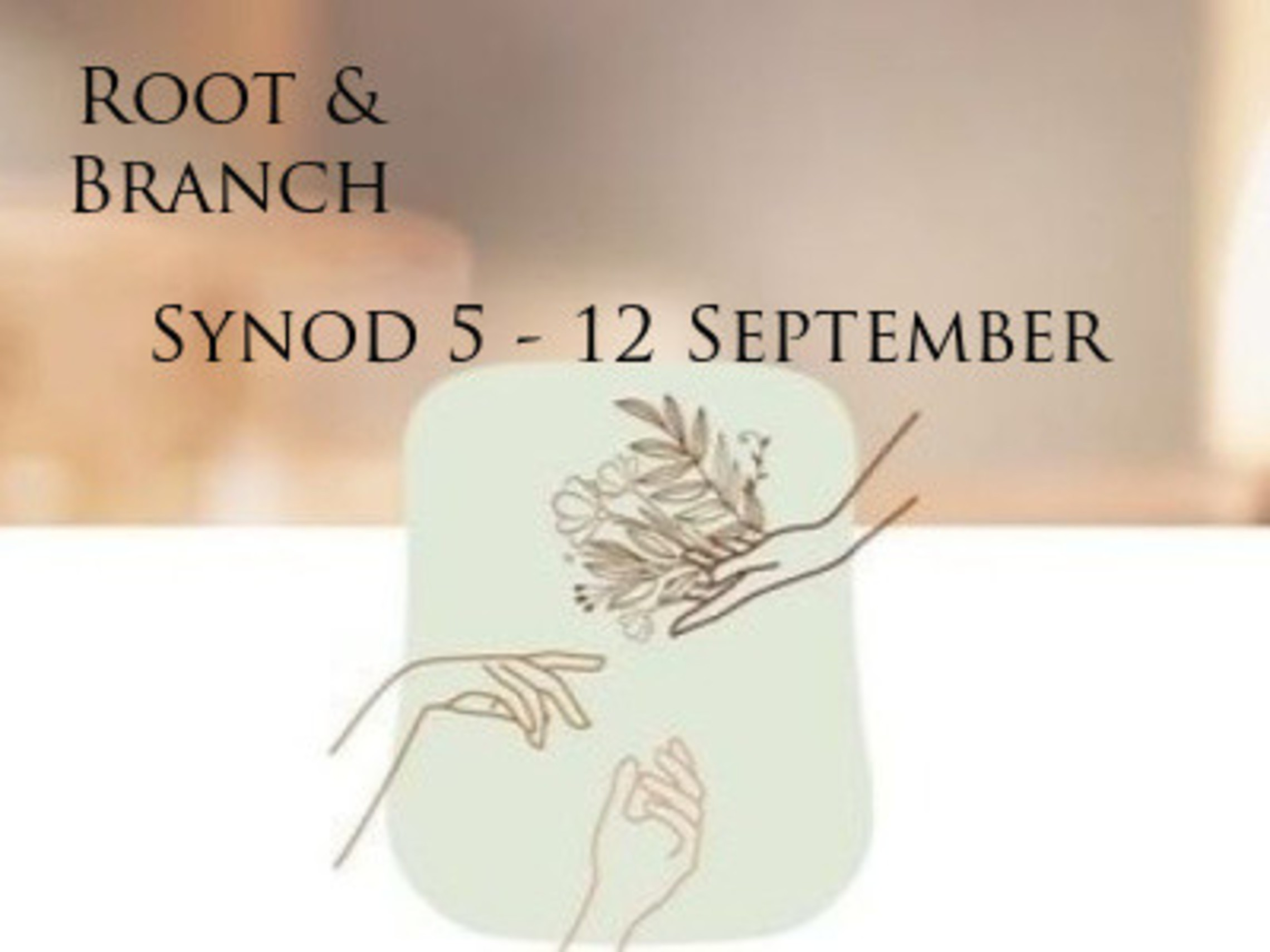 Root Branch 2